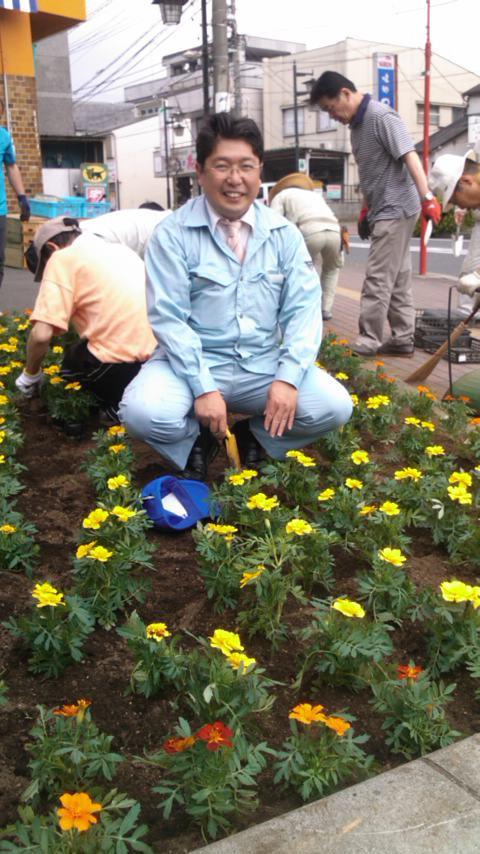 春の街路樹整備事業(フラワーロード)花の植え替え